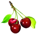 Columbia Cove Cherries